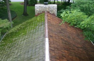 Pressure wash roof cleaning in West Milford, New Jersey